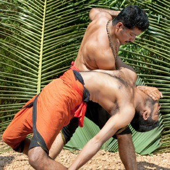 actualizing-power-s--and-crafting-a-self-in-kalarippayattu-a-south-indian-martial-art-and-the-yoga-and-ayuvedic-paradigms-3.jpg